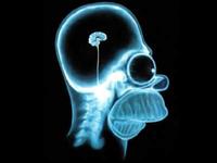 Смартфоны меняют мозг