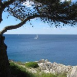 Хорватия:отель Verudela